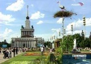 Выставка Ландшафтных Садов начинает свою работу на ВВЦ