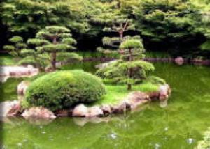 Ограда из природного камня