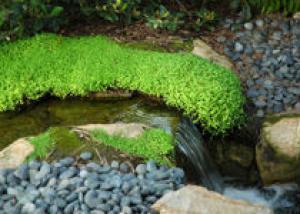 Водопад в устье ручья