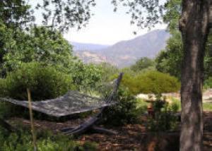 Естественный сад