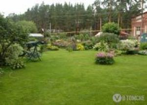 Райский сад Валентины Александровны