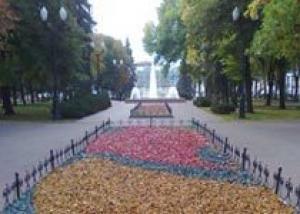 Тамбовские клумбы останутся цветными до зимы