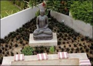 Чем балийский сад отличается от европейского?
