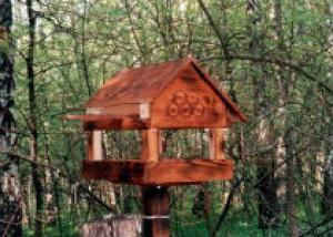 В Мексике орнитолог построил «птичий сад»