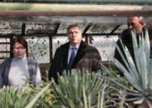 Ростовский ботанический сад спасут от морозов