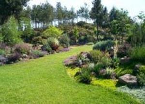 Обустраиваем ландшафт частного двора