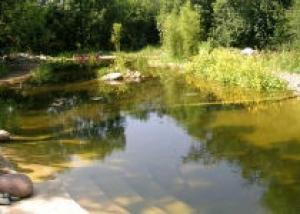 Пруд-купальня в саду