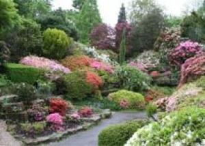 Каменистые сады – высочайшее достижение в сфере садоводства