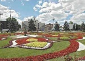 История появления газона и его функции
