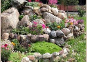 Альпинарий — кусочек горного пейзажа в твоем саду