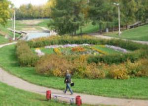 На озеленение Кирова выделят 2 миллиона 400 тысяч рублей