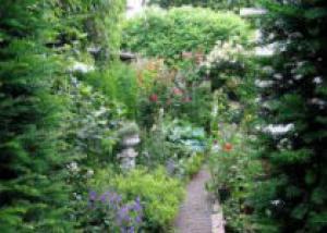 Календарь садовода в августе