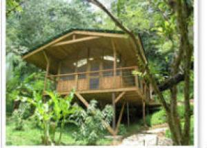 Дома на деревьях Finca Bellavista