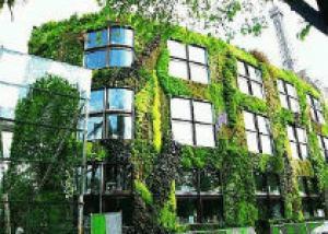 Дизайн ландшафта создаст вашему дому неповторимый современный вид