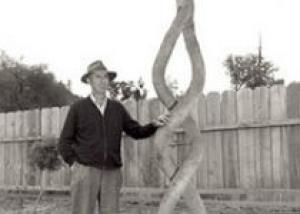 Скульптура из живых деревьев – арбоскульптура