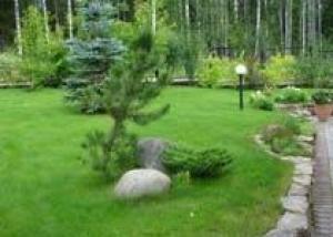 Природный камень – лучшее решение для ландшафтного дизайна