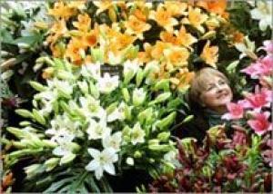 Цветочное шоу Харрогейта снова отмечает победу