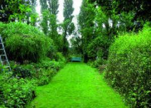 Травяные дорожки своими руками