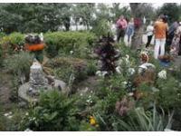В Тамбове ландшафтный дизайн дворовых территорий оценивает экспертное жюри