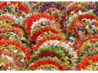 Выставка цветочного и ландшафтного дизайна пройдет в Хабаровске