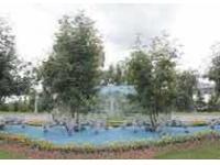 На набережной Оби появились фонтаны из цветов