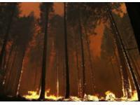 Пожарные США борются со стихией в парке Йосемити