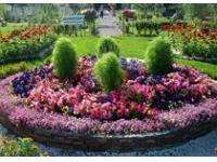 Одобрен проект создания ландшафтного парка в Череповце