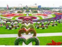 В Дубае открылся цветочный парк