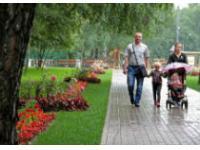 В парке «Садовники» откроется ботанический сад