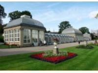 Реорганизация ботанического сада в Ташкенте