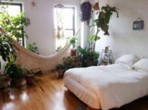Растения для спальни. Какие подойдут?