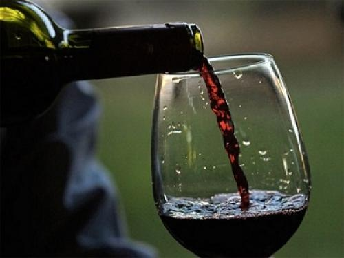 Чилийское красное вино от ГК «Бастион»: отличное качество, демократичная цена и возможность приятных сюрпризов